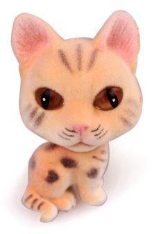 Кошка флок. Рыжик